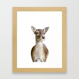 Hello deer! Framed Art Print