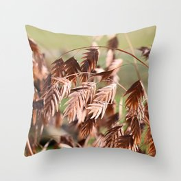 Closeup of brown (dried) plants outdoor Throw Pillow