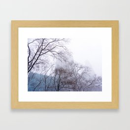 Snow in the Bryant Park Sky, NYC Framed Art Print