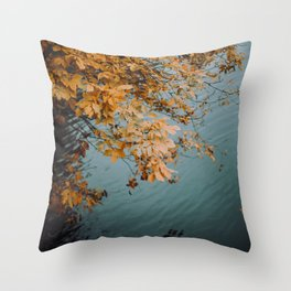 Autumn Copper + Teal Throw Pillow