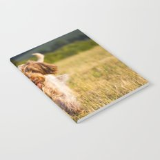 Brown Roan Italian Spinone Dog in Action Notebook