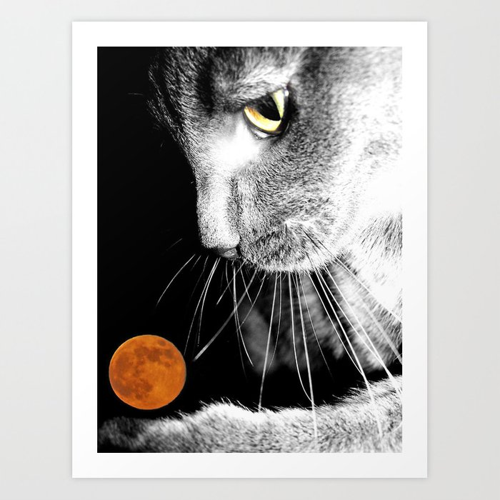 Silver Cat and Moon Art Print