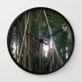 Banyan Trees II - Sarasota, FL Wall Clock