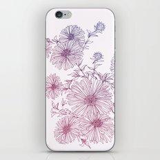Chrysanthemum iPhone & iPod Skin