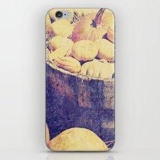 Fall Pumpkins iPhone & iPod Skin