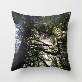 Light through branch Throw Pillow