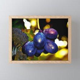 New year's Eve in the Garden Framed Mini Art Print