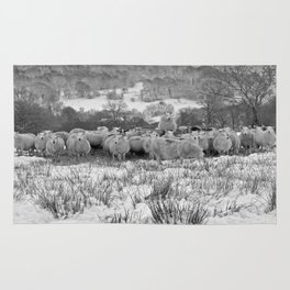 Sheep on the Brecon Beacons.Wales. Rug