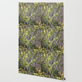 Hummingbird in the Bushes Wallpaper