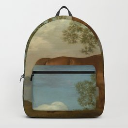 George Stubbs - Pumpkin with a Stable-lad Backpack
