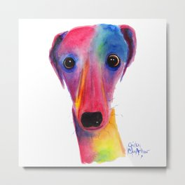 Nosey Dog Whippet Greyhound ' BeLLa ' by Shirley MacArthur Metal Print