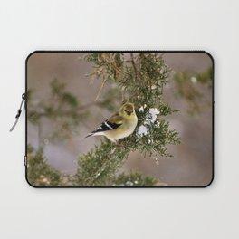 Professor Goldfinch Laptop Sleeve