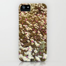 Daisy Fields iPhone Case