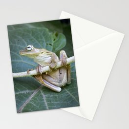 Nature - Frog Photography Stationery Cards