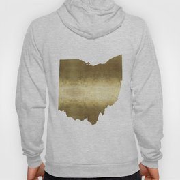 ohio gold foil state map Hoody