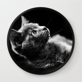 kitten looking up Wall Clock
