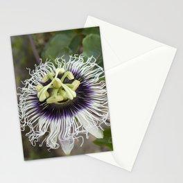Passiflora edulis flavicarpa Stationery Cards