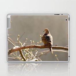Highline Bird Laptop & iPad Skin