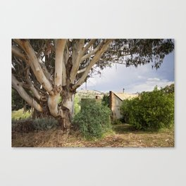 Cottage in the Hills Canvas Print