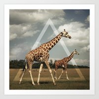giraffes Art Prints featuring Giraffes by Niklas Rosenkilde