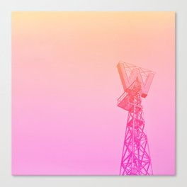 Woodwards in Pink Canvas Print