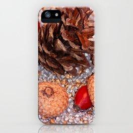 Rosa coxis in arbores autumnales iPhone Case