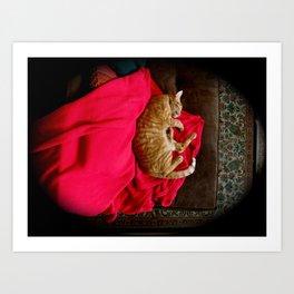 Sleeping Ninja Kitty with Red Cape Art Print