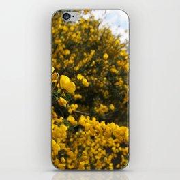 Scotch Broom iPhone Skin