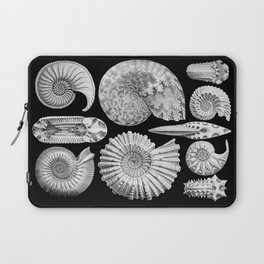 Sea Shells and Fossils (Ammonitida) by Ernst Haeckel Laptop Sleeve