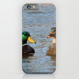 A Pair of Mallard Ducks iPhone Case