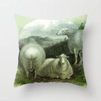 ass Throw Pillows featuring Sheep's Ass by Connie Goldman