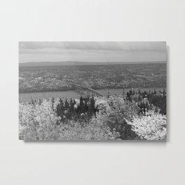 Seal Island BW Metal Print
