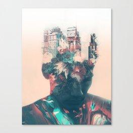 564 Canvas Print