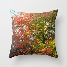Autumn Leaves I Throw Pillow