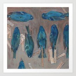 Indigo Buntings Bird Specimens Art Print