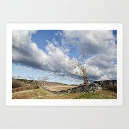 Dead Tree and Stone Wall Color Rural Landscape Photograph Art Print