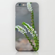 pretty little things iPhone 6s Slim Case