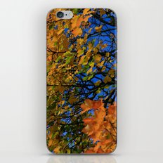 The Burning Tree iPhone & iPod Skin