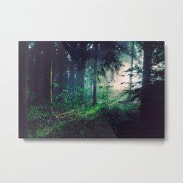 Wayward Wilderness Metal Print