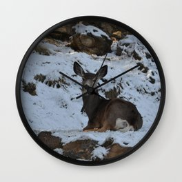 East Oregon Mule Deer Wall Clock