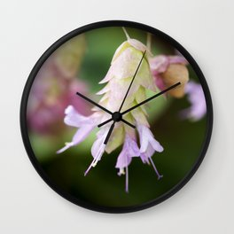 Hop Marjoram Wall Clock
