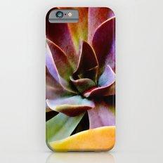 Spectacular Succulents Slim Case iPhone 6s