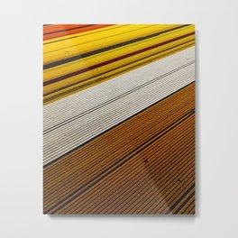 Dutch Flowerfields Metal Print
