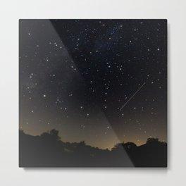 Perseids Meteor Shower Metal Print