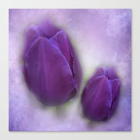 tulips on marble background Canvas Print