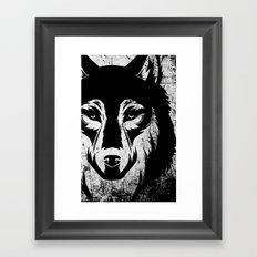 The Grey Wolf Framed Art Print