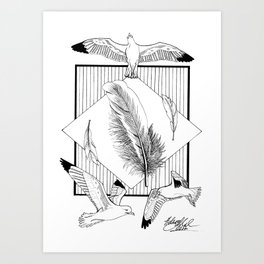 Seagulls with feathers - Ink artwork Art Print