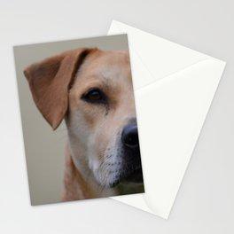 dog - Moka Stationery Cards