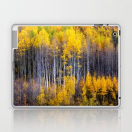 Autumn Aspens - Rows of Colorado Aspen Trees with Autumn Color in Reflection Illusion Laptop & iPad Skin