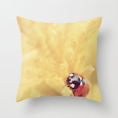 7 Spotted Ladybird/Ladybug Throw Pillow